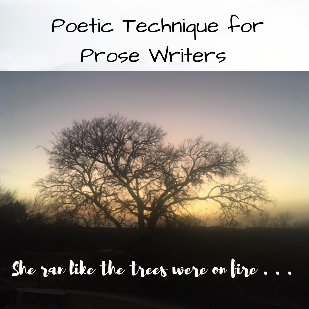 poetictechniqueforprosewriters