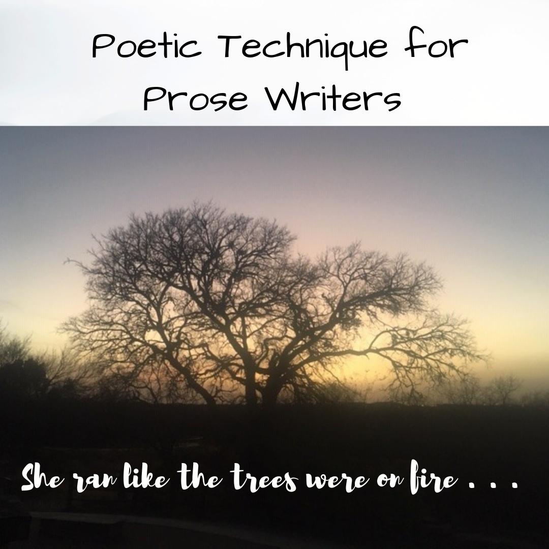 poetictechniqueforprosewriters